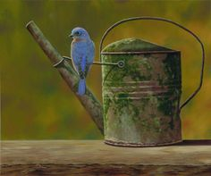 Rustic Perch - blue bird oil painting by Camille Engel.  Looks like a photograph!