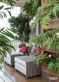 A great use of vertical planting on a small balcony to create a lush garden feel. Porch And Balcony, Outdoor Balcony, Outdoor Rooms, Outdoor Living, Outdoor Furniture Sets, Outdoor Decor, Terrace Garden, Indoor Garden, Home And Garden