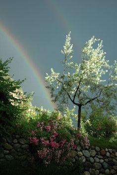 Rainbow.... I wonder how these photo people get these shots! photo 101 I need ...Lovely ....