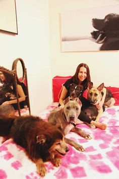 Julia Szabo in her chic NYC apartment with four of her dogs - all rescues : )