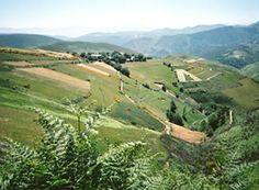 Camino De Santiago trail---- along the French/Spanish Pyrenees border 750 KM.