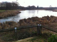 #CuckoosHollow #Werrington #SiltLevels #Lakeside #Gildale