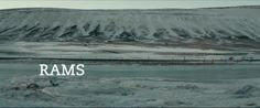 hrutar film - Szukaj w Google