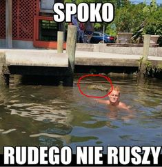 I tak jego egzystęcja to ból Very Funny Memes, Wtf Funny, Why Are You Laughing, Polish Memes, Good Mood, Best Memes, Pranks, Nice View, Funny Pictures