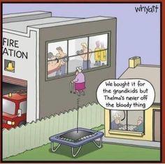Funny Cartoons, Funny Comics, Funny Memes, Hilarious, Funny Animal Pictures, Funny Photos, Funny Pix, Political Comics, Tuesday Humor