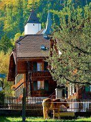 Panoramio - Photo of Regard photographique
