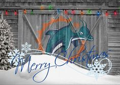 Dolphins Greeting Card featuring the photograph Miami Dolphins by Joe Hamilton