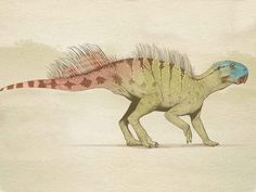 Psittacosaurus mongoliensis (male): Early Cretaceous (123.2 - 100 Ma): Ornithischia: Discovered by Osborn, 1923: Artwork by Juan Carlos Alonso