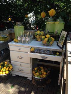 Lemonade stand party ideas