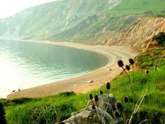 Worbarrow Bay, Tyneham, Dorset, England