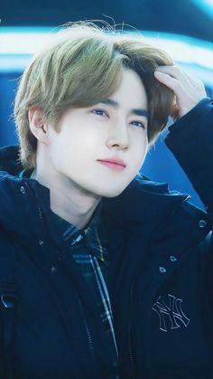 I tried a hair color on him.and it looks BOP. Baekhyun, Kaisoo, Exo Ot12, Park Chanyeol, Kris Wu, K Pop, F4 Boys Over Flowers, Kim Joon Myeon, Actor