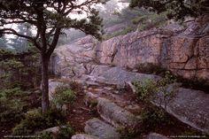 Pink Granite on Great Head Trail