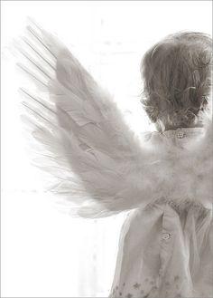 tiny angel  by Crystal Marks crystalmarksphoto...