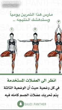 Health And Fitness Expo, Fitness Workout For Women, Fitness Tips, Yoga Fitness, Gym Workout Videos, Gym Workout For Beginners, Gym Workouts, Sports Physical Therapy, Full Body Weight Workout