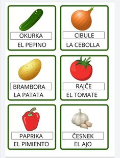 Cucumber, Garlic, Onion, Potatoes