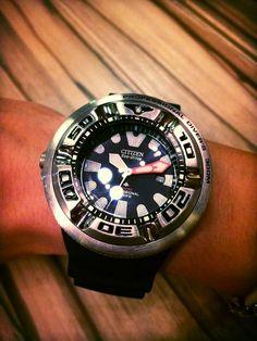 Citizen 'Ecozilla' Promaster Diver 300m