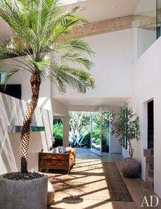 A Peek Inside: Patrick Dempsey's Malibu Home