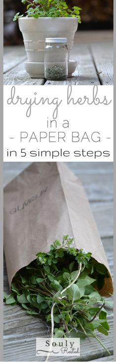 5 Simple Steps to Drying Herbs in a Paper Bag The easiest endeavor I've tackled since our family started our homesteading journey! Drying herbs in paper bags is THAT simple! Herbal Remedies, Natural Remedies, Organic Gardening, Gardening Tips, Growing Herbs, Medicinal Plants, Herbal Medicine, Fresh Herbs, Container Gardening