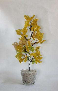 An autumn birch