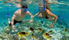 Cheap Phu Quoc beach holidays, including both group tours and private tours. Phu Quoc island is a new rising star of Vietnam tourism with daily direct flights from Siem Reap, Singapore, Saigon and Hanoi. Visa exemption for ALL nationalities within 15 day stay.