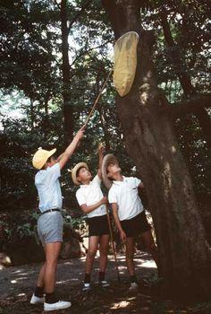 Boys outside. Shorts. Hats. Butterfly net. Japan