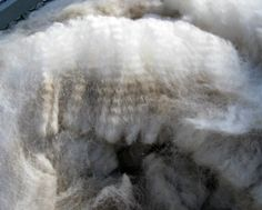 1 Oz Each Color Weaving Carded Alpaca Top in Six Natural Colors Combed Top Roving  For Handspinning 6 Ounces Felting