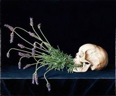 Christopher Beaumont Vanitas - Still Life with Lavender,  2007
