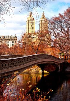 Bow Bridge in Autumn by midnightinparis - The Best Photos and Videos of New York City including the Statue of Liberty, Brooklyn Bridge, Central Park, Empire State Building, Chrysler Building and other popular New York places and attractions.