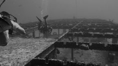 https://www.facebook.com/photo.php?fbid=10204006575710186  Wreck dive 60' - Cozumel Mexico