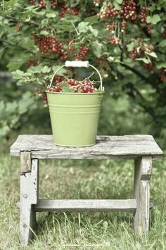 I love the color of this bucket. A lighter shade would be beautiful in my bedroom with all the heavy dark furniture.