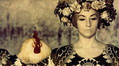 THE COLOR OF POMEGRANATES directed by SERGEI PARAJANOV Soviet Union, 1969