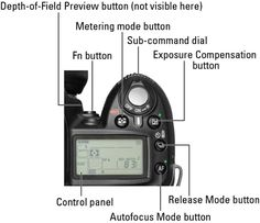 Get to know the external controls and all the functions of the automatic and advanced exposure modes on your Nikon digital camera, and you're on your way to taking great digital photos! Photography Cheat Sheets, Photography Lessons, Photography Gear, Digital Photography, Video Photography, Amazing Photography, Classic Photography, Photography Projects, Photography Equipment