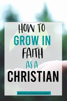 How can you grow in your faith as a Christian? Check out our article for tips #christian encouragement #grow in faith #bible study #biblical encouragement
