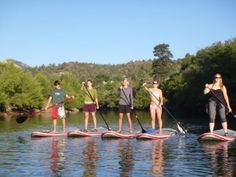 Learn to stand up paddle board this summer in a course with experienced instructors and or rent a board and take it out on your own!