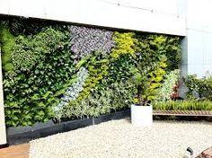 como hacer un jardin vertical - Buscar con Google