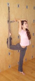 57 best iyengar yoga rope wall standing poses images