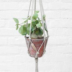 Stoer en simpel! #snoeps  #plantenhangers #hanginggarden #urban #interiordesign