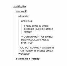 Harry Potter Puns, Harry Potter Marauders, Harry Potter Universal, Harry Potter World, Sassy Harry Potter, Hogwarts, Slytherin, Ravenclaw Memes, No Muggles