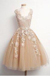 A Beige Lace Voile Dress