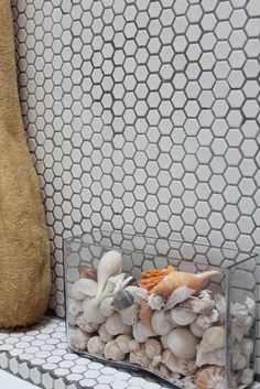 i love collecting shells. a nice way to display them.