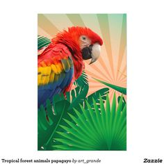Tropical forest animals papagayo stationery