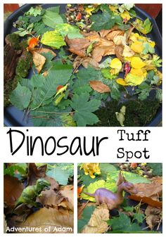 Dinosaur Tuff Spot and small world using autumn leaves Adventures of Adam Dinosaur Tuff Spot