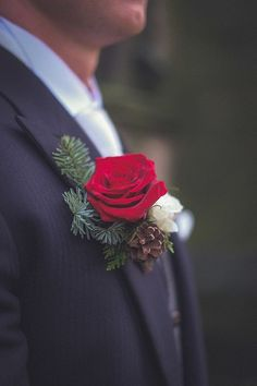 Red rose and Spruce Buttonhole . Winter Christmas inspiration