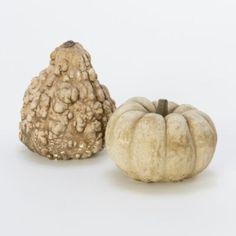 Gourds  #shopterrain