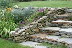A clematis doesn't necessarily need a trellis. Garden designer Rebecca Batchie allowed this clematis to carpet a piece of chicken wire atop a stone wall in this South Kent, Connecticut, garden. It...