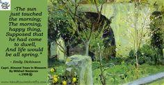 Almond Tree in Bloom Moscou) Tree Study, Capri, Spring Painting, Great Paintings, Oil Paintings, Natural Scenery, Russian Art, Henri Matisse, Outdoor Art