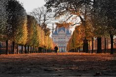Walking to the Louvre, Paris.- Paris in the Fall? Tuileries Paris, Jardin Des Tuileries, Versailles, Oh The Places You'll Go, Places To Visit, Autumn Rain, Autumn Feeling, Wanderlust Travel, Paris France
