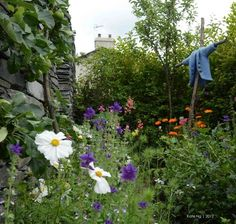 The Peter Rabbit Garden, The World of Beatrix Potter Attraction, Cumbria LA23 3BX, Bowness-on-Windermere