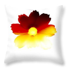Decorative Throw Pillows, floral throw pillows, pillow case, Designer pillow covers, decorative pillow, pillows,sunset,white,flower,red, art by HeatherJoyceMorrill on Etsy