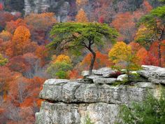 Overlook at Fall Creek Falls State Park in Middle Tennessee - located between Pikeville & Spencer, Tennessee